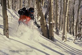 colorado_bed_and_breakfast_activities_downhill